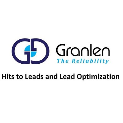 Hit to Lead and Lead Optimization